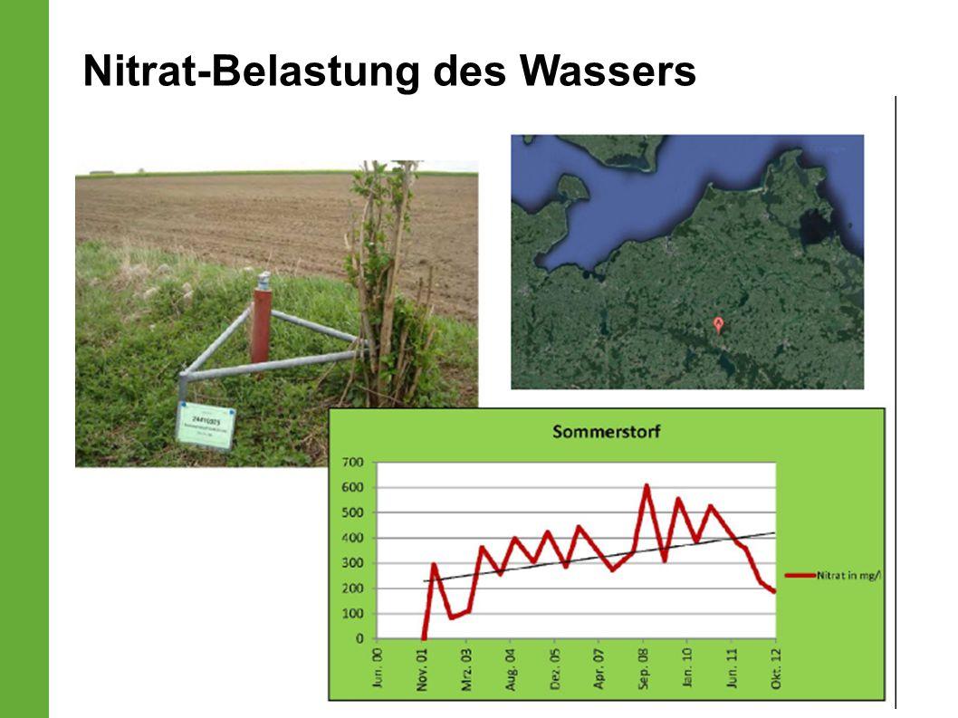 Nitrat-Belastung des Wassers