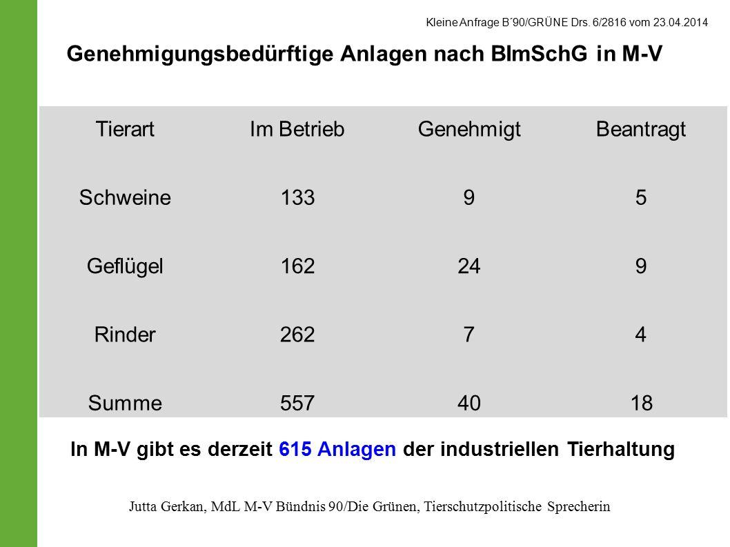 Tierart Im BetriebGenehmigtBeantragt Schweine 13395 Geflügel 162249 Rinder 26274 Summe5574018 Genehmigungsbedürftige Anlagen nach BImSchG in M-V Kleine Anfrage B´90/GRÜNE Drs.