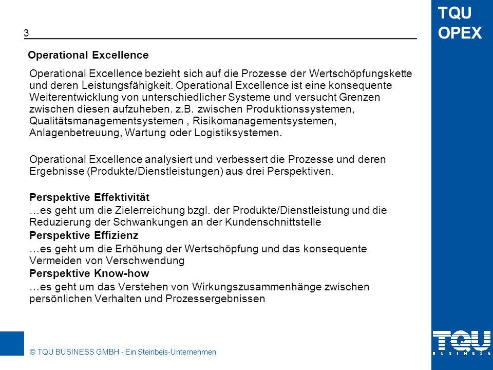 © TQU BUSINESS GMBH - Ein Steinbeis-Unternehmen TQU OPEX Wir unterscheiden drei Möglichkeiten, um Operational Excellence umzusetzen.