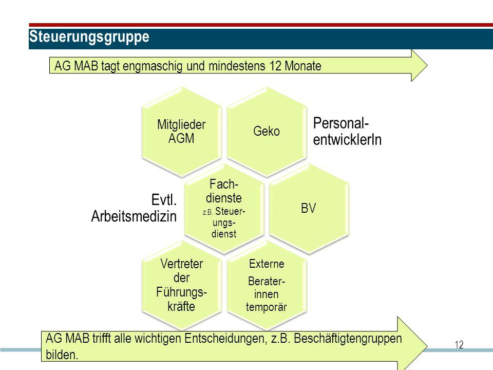 Steuerungsgruppe Geko Personal- entwicklerIn Mitglieder AGM Fach- dienste z.B. Steuer- ungs- dienst Evtl. Arbeitsmedizin BV Externe Berater- innen tem