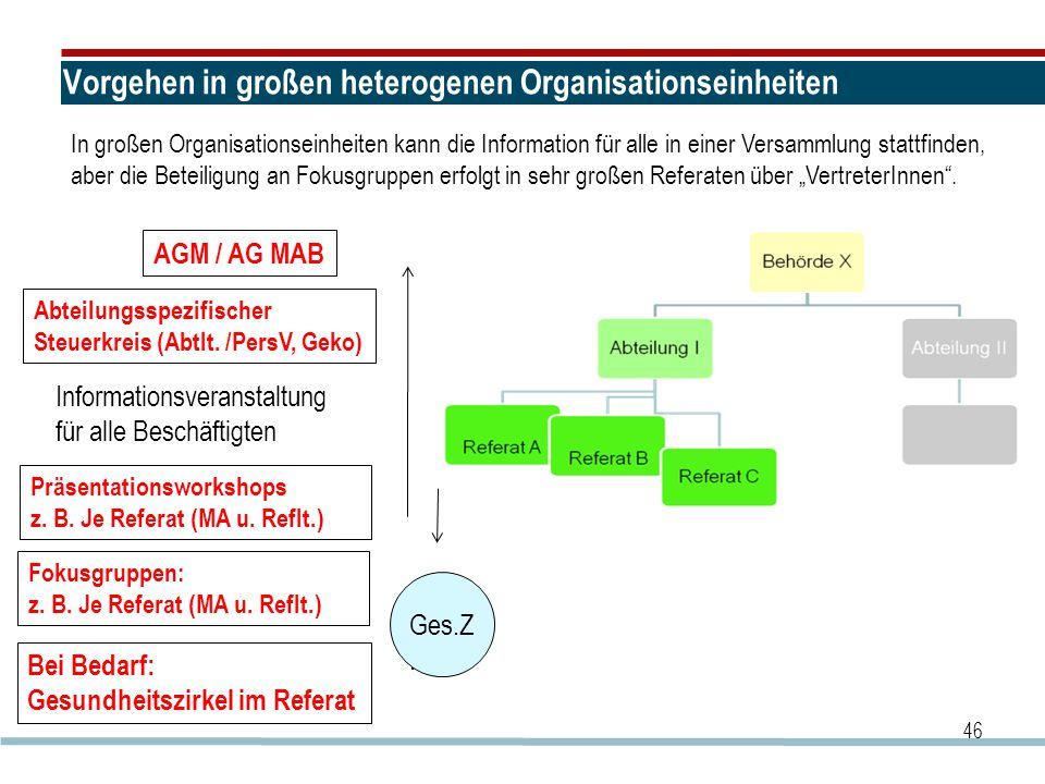 Vorgehen in großen heterogenen Organisationseinheiten 46 AGM / AG MAB Abteilungsspezifischer Steuerkreis (Abtlt. /PersV, Geko) Fokusgruppen: z. B. Je