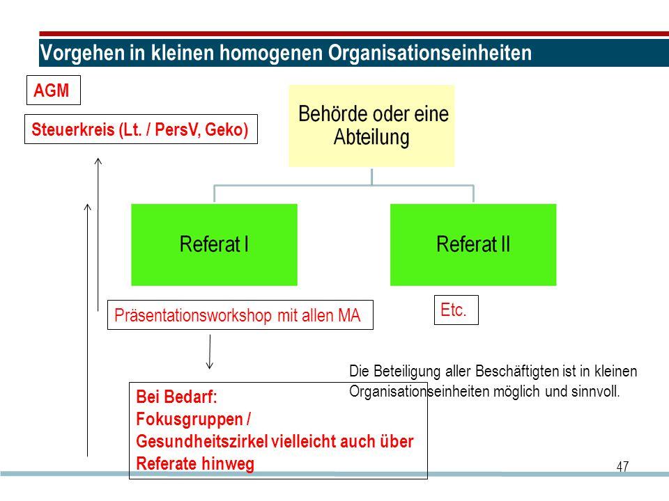 Vorgehen in kleinen homogenen Organisationseinheiten 47 Präsentationsworkshop mit allen MA Etc. Steuerkreis (Lt. / PersV, Geko) Bei Bedarf: Fokusgrupp