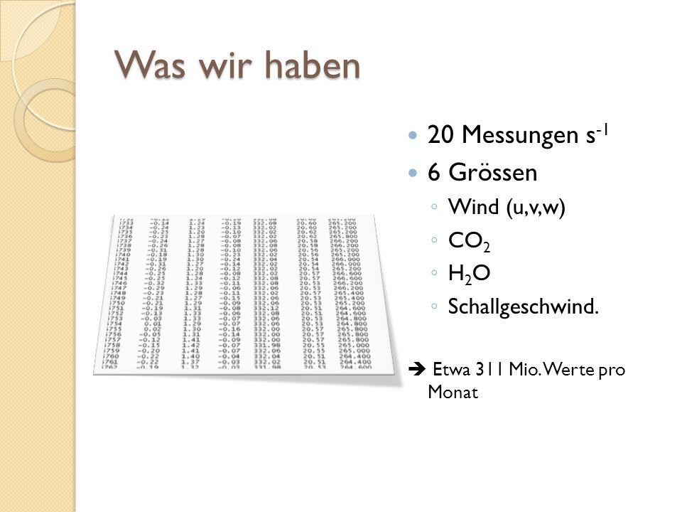 Was wir haben 20 Messungen s -1 6 Grössen ◦ Wind (u,v,w) ◦ CO 2 ◦ H 2 O ◦ Schallgeschwind.  Etwa 311 Mio. Werte pro Monat