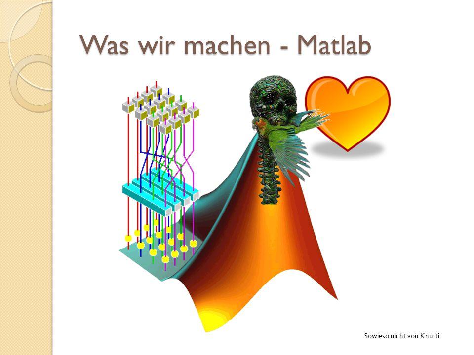 Was wir machen - Matlab Sowieso nicht von Knutti