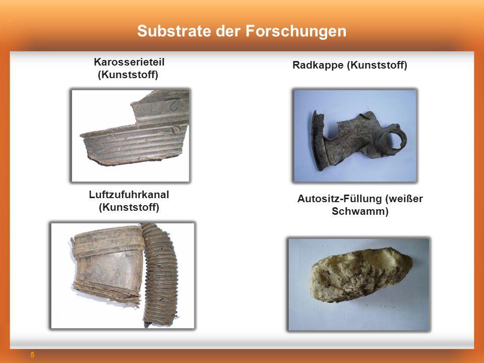 5 Substrate der Forschungen Karosserieteil (Kunststoff) Autositz-Füllung (weißer Schwamm) Luftzufuhrkanal (Kunststoff) Radkappe (Kunststoff)