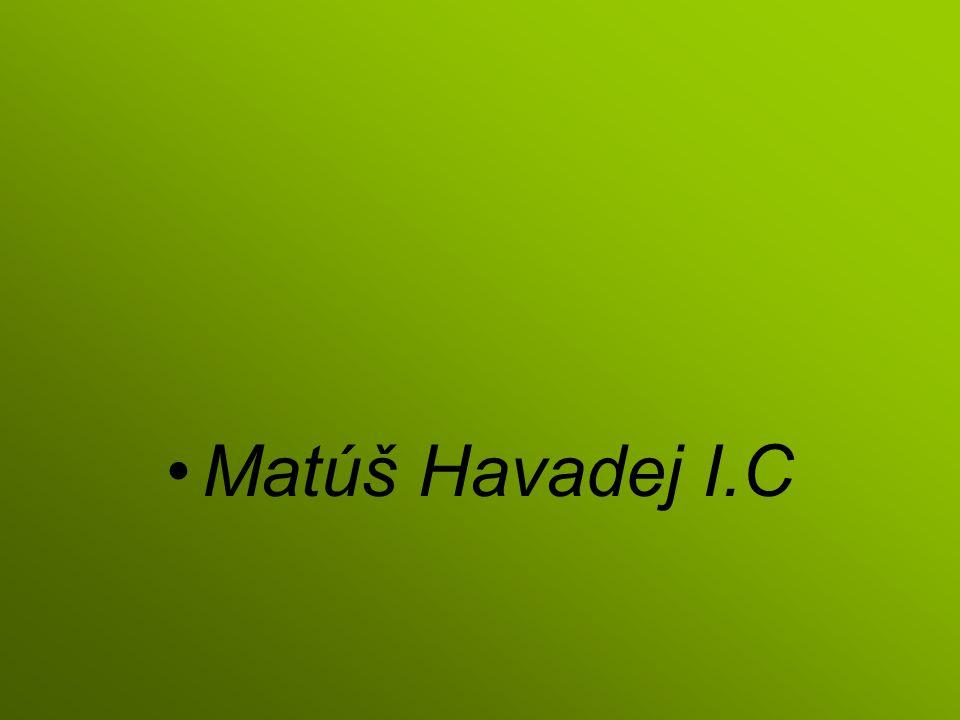 Matúš Havadej I.C