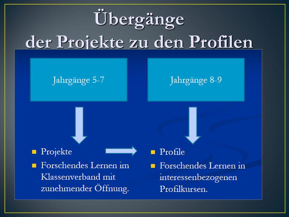 Übergänge der Projekte zu den Profilen