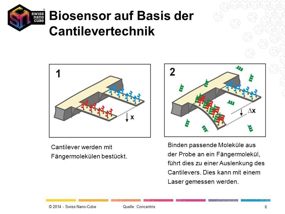 © 2014 - Swiss Nano-Cube Cantilever werden mit Fängermolekülen bestückt. Binden passende Moleküle aus der Probe an ein Fängermolekül, führt dies zu ei