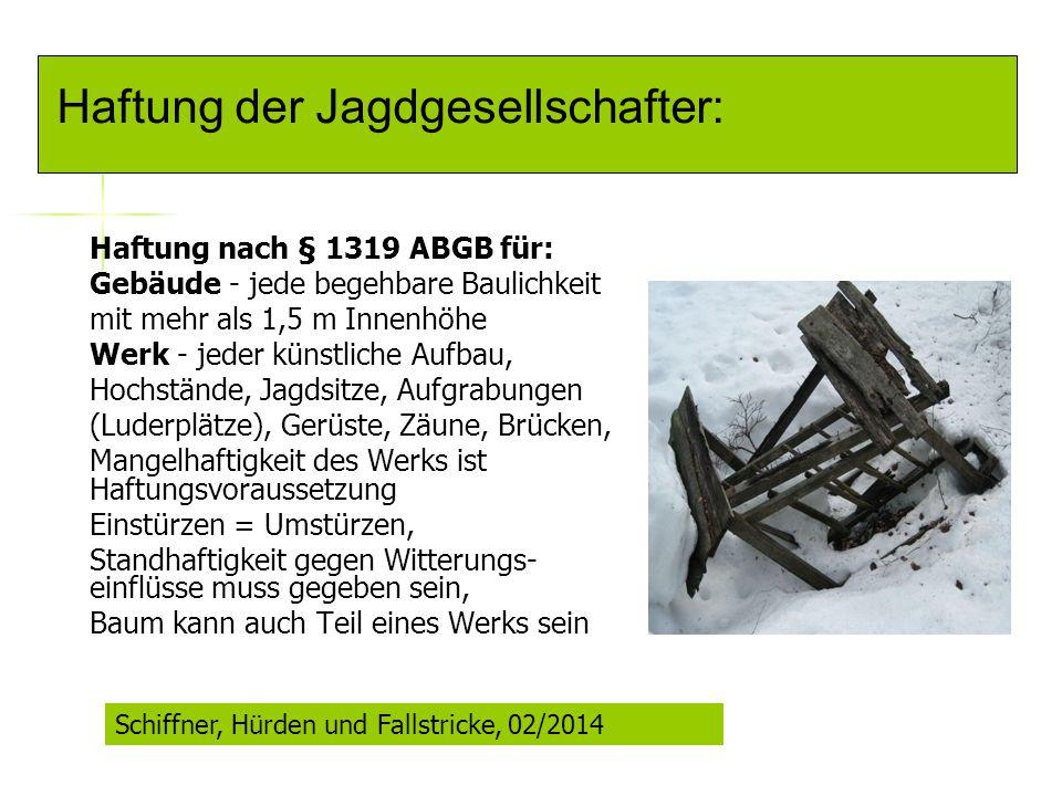 Haftung nach § 1319 ABGB für: Gebäude - jede begehbare Baulichkeit mit mehr als 1,5 m Innenhöhe Werk - jeder künstliche Aufbau, Hochstände, Jagdsitze,
