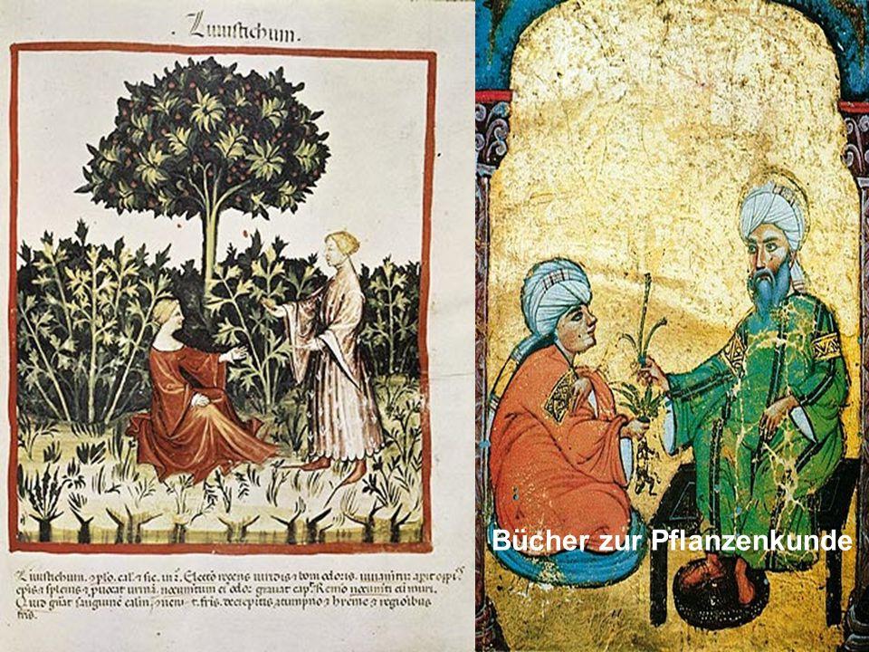 Bücher zur Pflanzenkunde