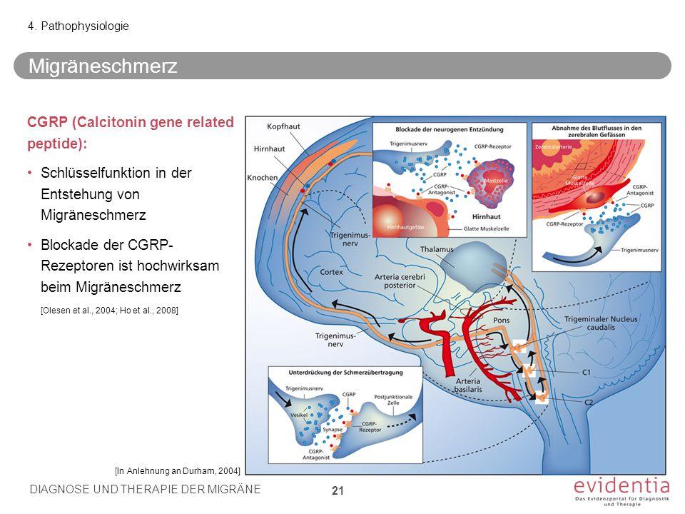 Migräneschmerz CGRP (Calcitonin gene related peptide): Schlüsselfunktion in der Entstehung von Migräneschmerz Blockade der CGRP- Rezeptoren ist hochwirksam beim Migräneschmerz 4.
