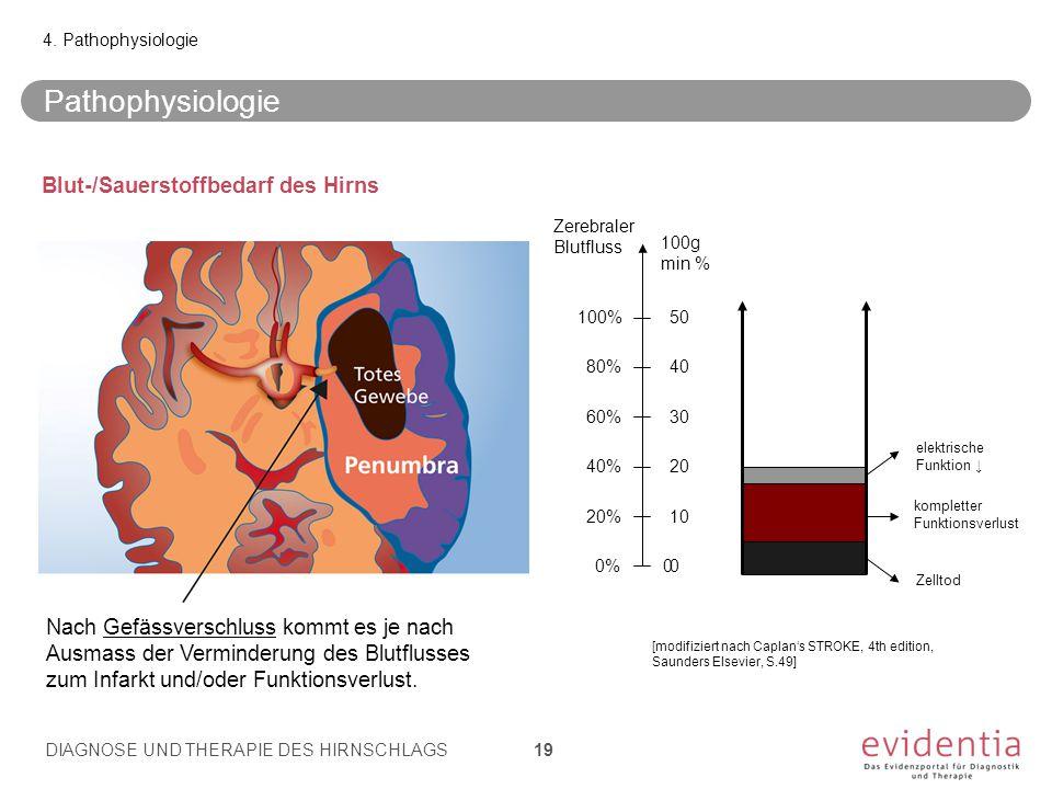 Blut-/Sauerstoffbedarf des Hirns 4. Pathophysiologie 100% 80% 60% 40% 20% 0%00 10 20 30 40 50 100g min % elektrische Funktion ↓ Zelltod kompletter Fun