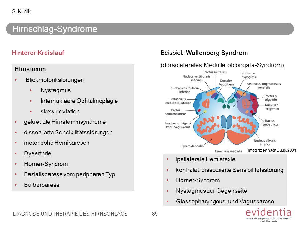 Hinterer KreislaufBeispiel: Wallenberg Syndrom (dorsolaterales Medulla oblongata-Syndrom) 5.