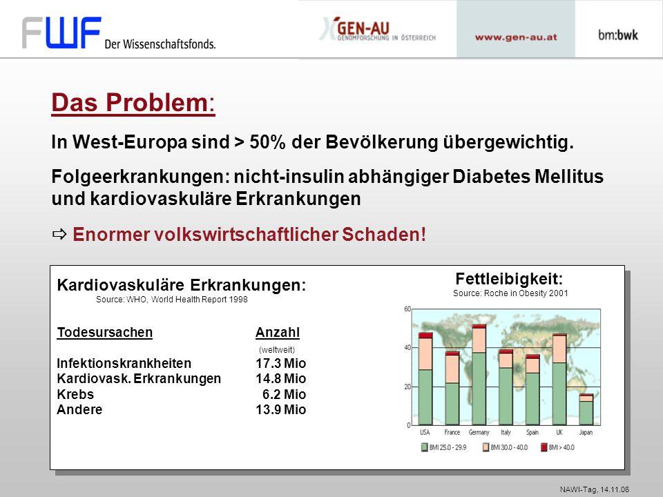 NAWI-Tag, 14.11.06 Kardiovaskuläre Erkrankungen: Source: WHO, World Health Report 1998 Todesursachen Anzahl (weltweit) Infektionskrankheiten 17.3 Mio