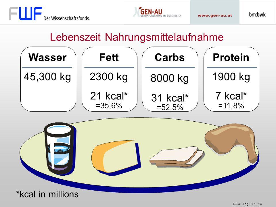 NAWI-Tag, 14.11.06 Lebenszeit Nahrungsmittelaufnahme *kcal in millions Wasser 45,300 kg Fett 2300 kg 21 kcal* =35,6% Carbs 8000 kg 31 kcal* =52,5% Pro