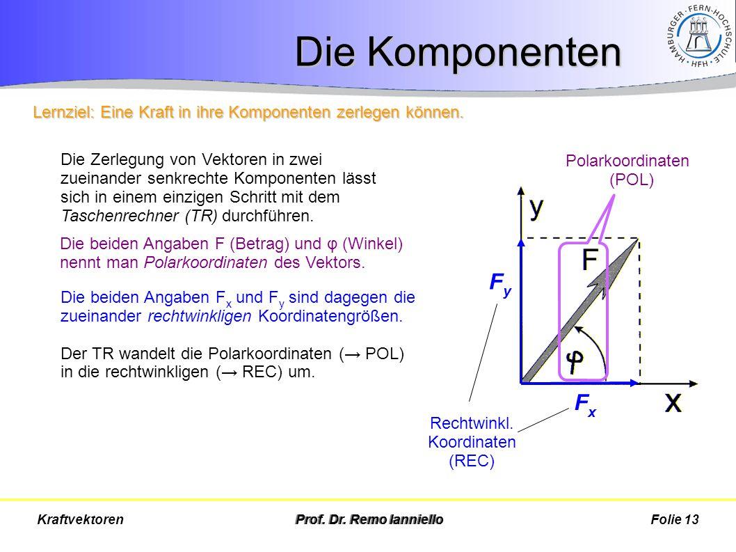 Die Komponenten Prof. Dr. Remo IannielloFolie 13Kraftvektoren FxFx FyFy Die Zerlegung von Vektoren in zwei zueinander senkrechte Komponenten lässt sic