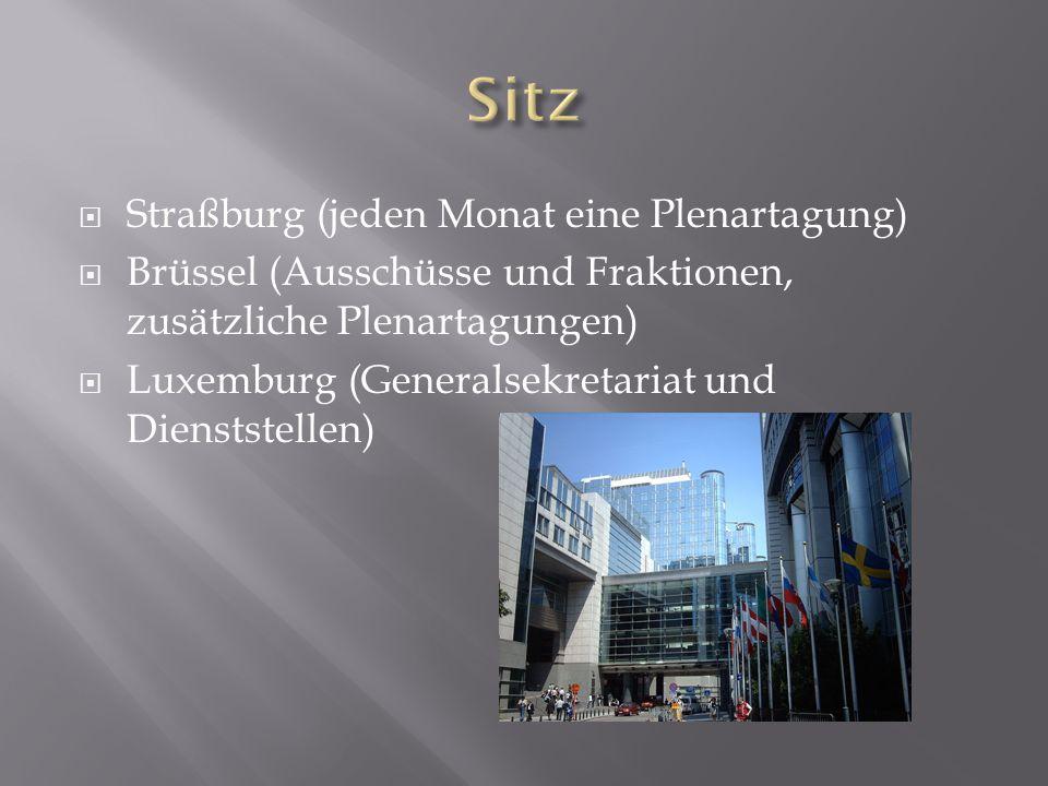  Straßburg (jeden Monat eine Plenartagung)  Brüssel (Ausschüsse und Fraktionen, zusätzliche Plenartagungen)  Luxemburg (Generalsekretariat und Dienststellen)