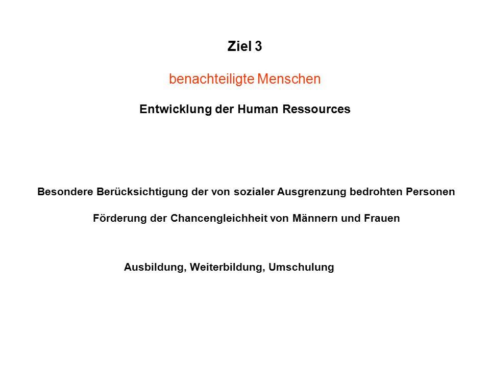 Ziel 3 benachteiligte Menschen Entwicklung der Human Ressources Besondere Berücksichtigung der von sozialer Ausgrenzung bedrohten Personen Förderung der Chancengleichheit von Männern und Frauen Ausbildung, Weiterbildung, Umschulung