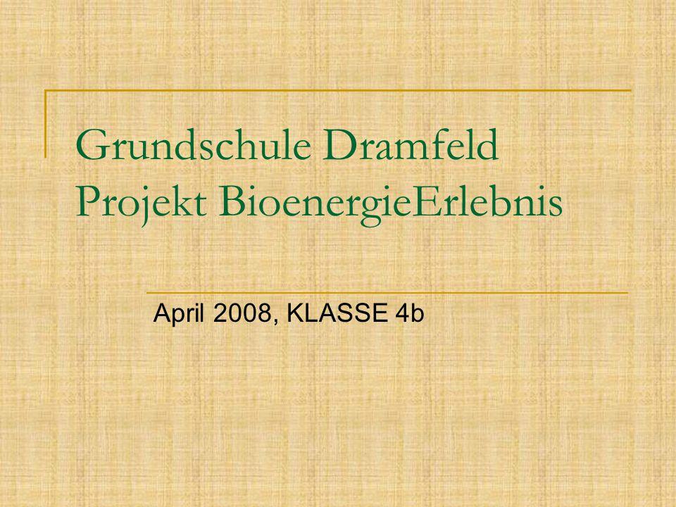 Grundschule Dramfeld Projekt BioenergieErlebnis April 2008, KLASSE 4b