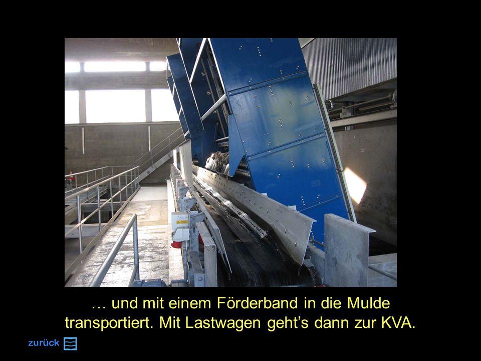… und mit einem Förderband in die Mulde transportiert. Mit Lastwagen geht's dann zur KVA.