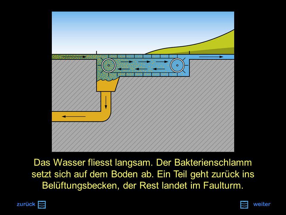 Das Wasser fliesst langsam.Der Bakterienschlamm setzt sich auf dem Boden ab.