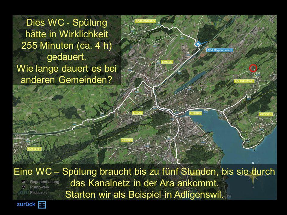 Lernfrage 1 Nach welchem dieser drei Becken fliesst das gesäuberte Wasser in die Reuss.