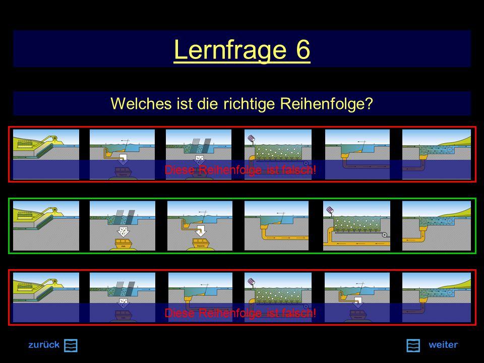 Lernfrage 6 Welches ist die richtige Reihenfolge? Diese Reihenfolge ist falsch!