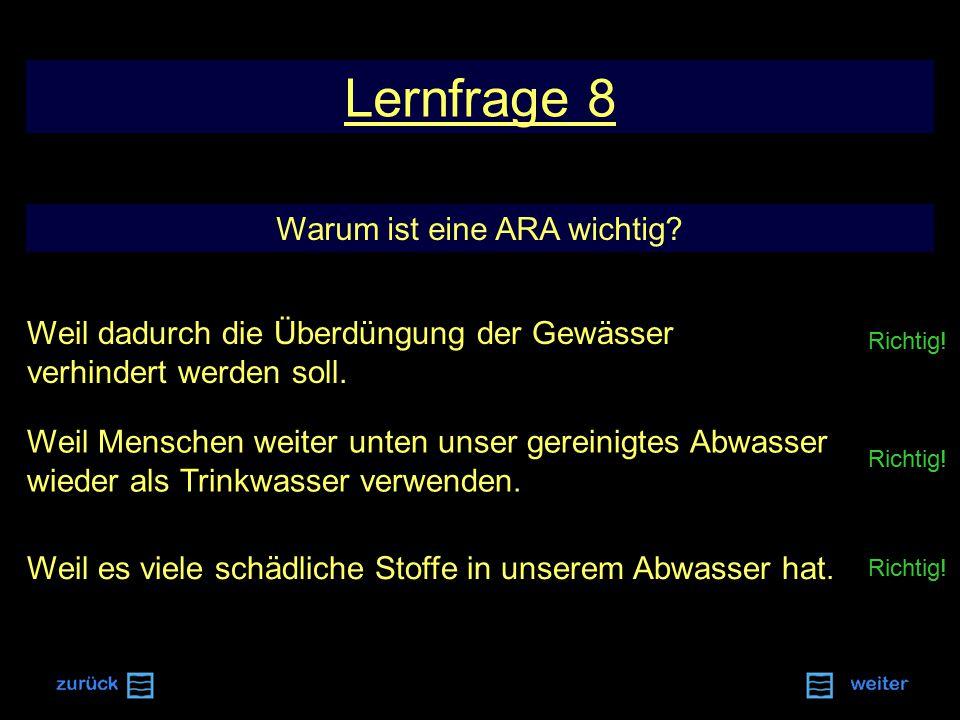 Richtig.Lernfrage 8 Warum ist eine ARA wichtig.