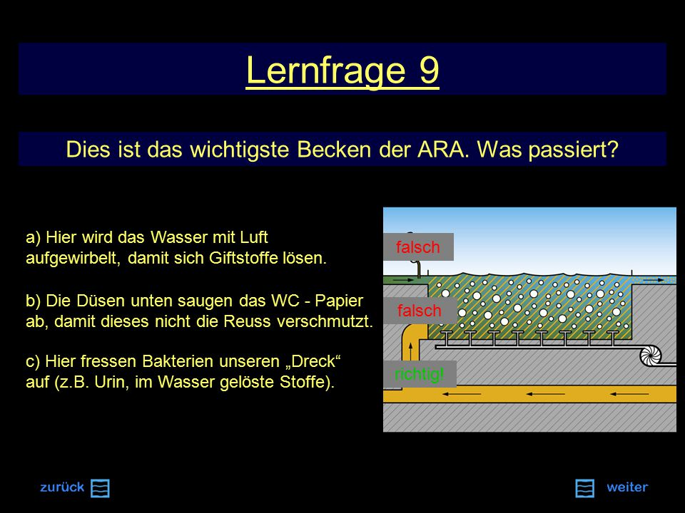 Lernfrage 9 Dies ist das wichtigste Becken der ARA.