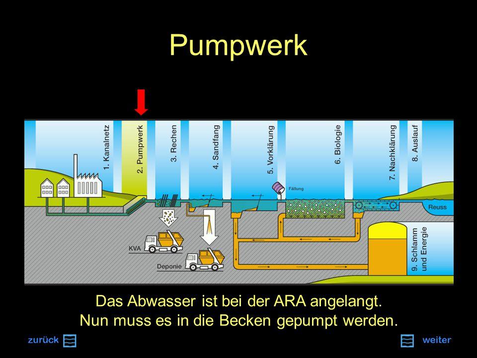 Pumpwerk Das Abwasser ist bei der ARA angelangt. Nun muss es in die Becken gepumpt werden.