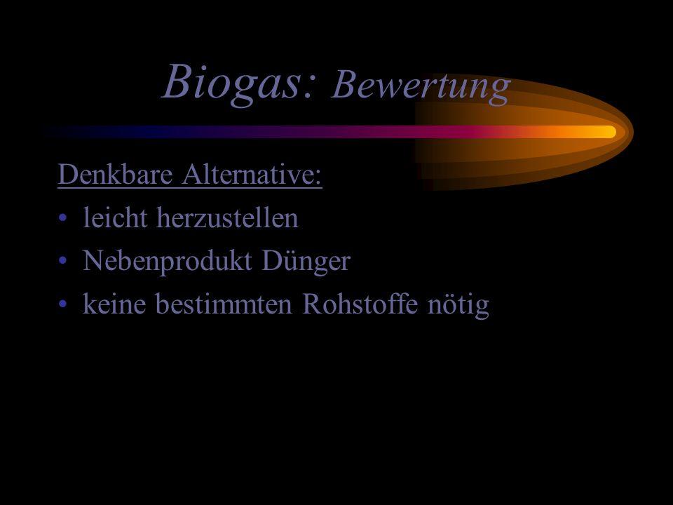 Biogas: Bewertung Denkbare Alternative: leicht herzustellen Nebenprodukt Dünger keine bestimmten Rohstoffe nötig