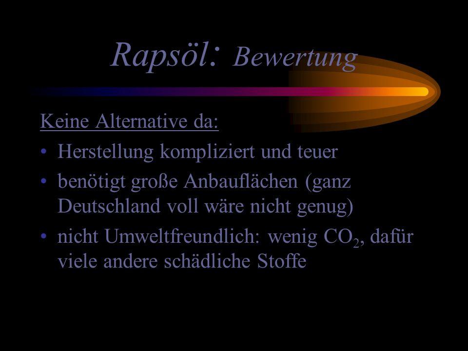 Rapsöl : Bewertung Keine Alternative da: Herstellung kompliziert und teuer benötigt große Anbauflächen (ganz Deutschland voll wäre nicht genug) nicht