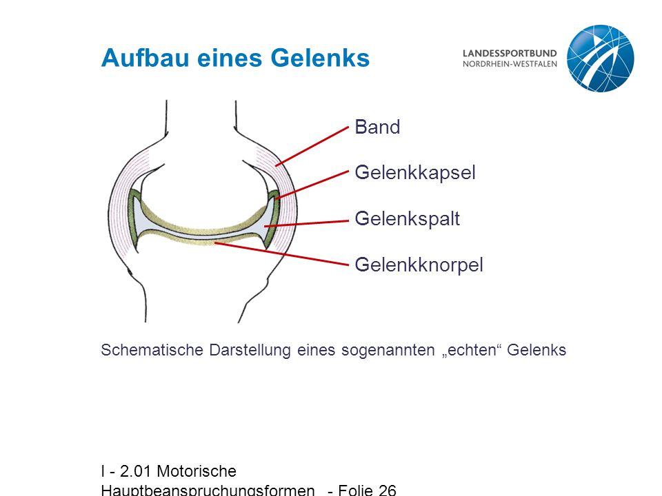 """I - 2.01 Motorische Hauptbeanspruchungsformen - Folie 26 Aufbau eines Gelenks Schematische Darstellung eines sogenannten """"echten"""" Gelenks Band Gelenkk"""