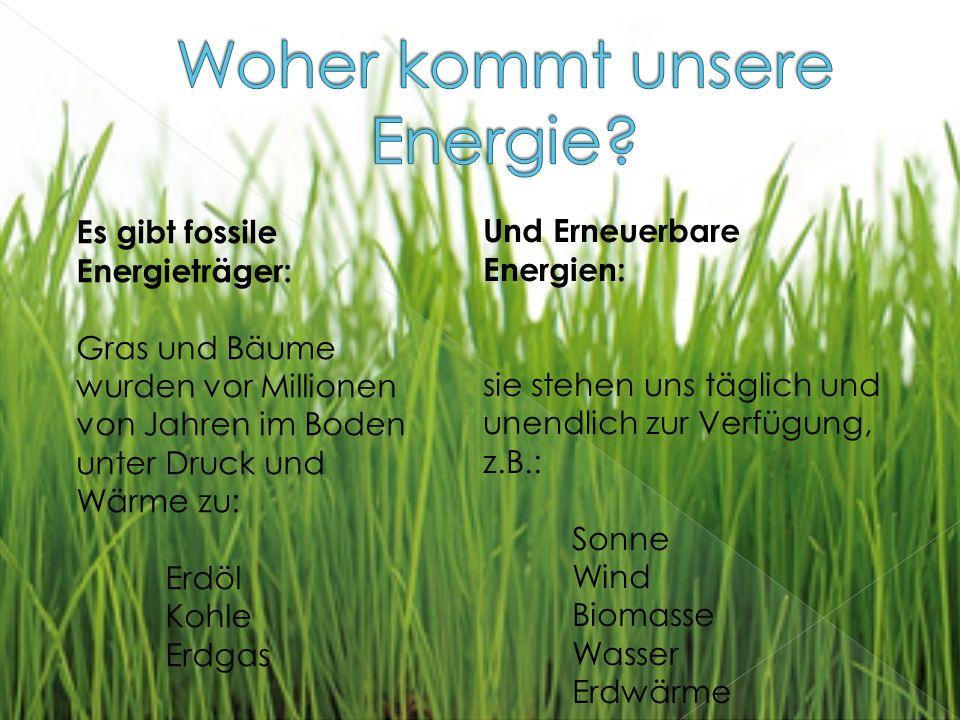 Es gibt fossile Energieträger: Gras und Bäume wurden vor Millionen von Jahren im Boden unter Druck und Wärme zu: Erdöl Kohle Erdgas Und Erneuerbare Energien: sie stehen uns täglich und unendlich zur Verfügung, z.B.: Sonne Wind Biomasse Wasser Erdwärme