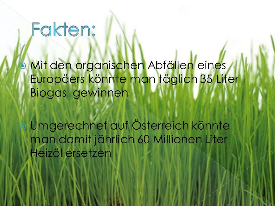 Mit den organischen Abfällen eines Europäers könnte man täglich 35 Liter Biogas gewinnen  Umgerechnet auf Österreich könnte man damit jährlich 60 Millionen Liter Heizöl ersetzen