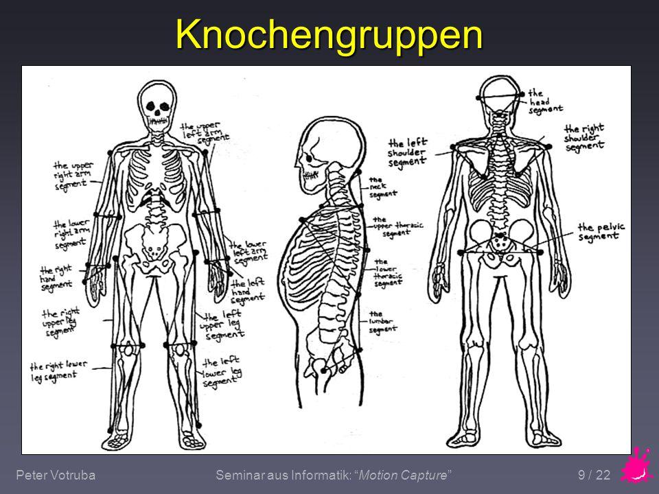 "Peter VotrubaSeminar aus Informatik: ""Motion Capture"" 9 / 22 Knochengruppen"