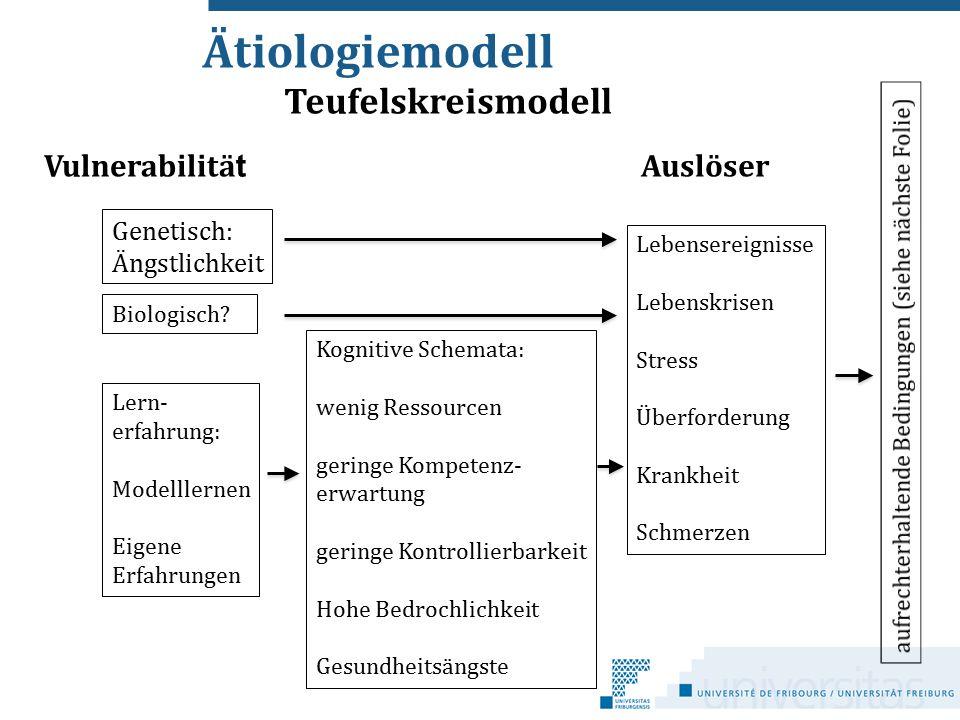 Ätiologiemodell Vulnerabilitä t Auslöser Genetisch: Ängstlichkeit Lern- erfahrung: Modelllernen Eigene Erfahrungen Kognitive Schemata: wenig Ressource