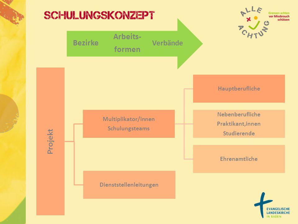 Projekt Multiplikator/innen Schulungsteams Hauptberufliche Nebenberufliche Praktikant,innen Studierende Ehrenamtliche Dienststellenleitungen Verbände