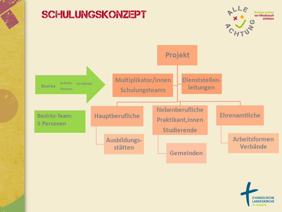 Projekt Hauptberufliche Ausbildungs- stätten Nebenberufliche Praktikant,innen Studierende Gemeinden Ehrenamtliche Arbeitsformen Verbände Multiplikator