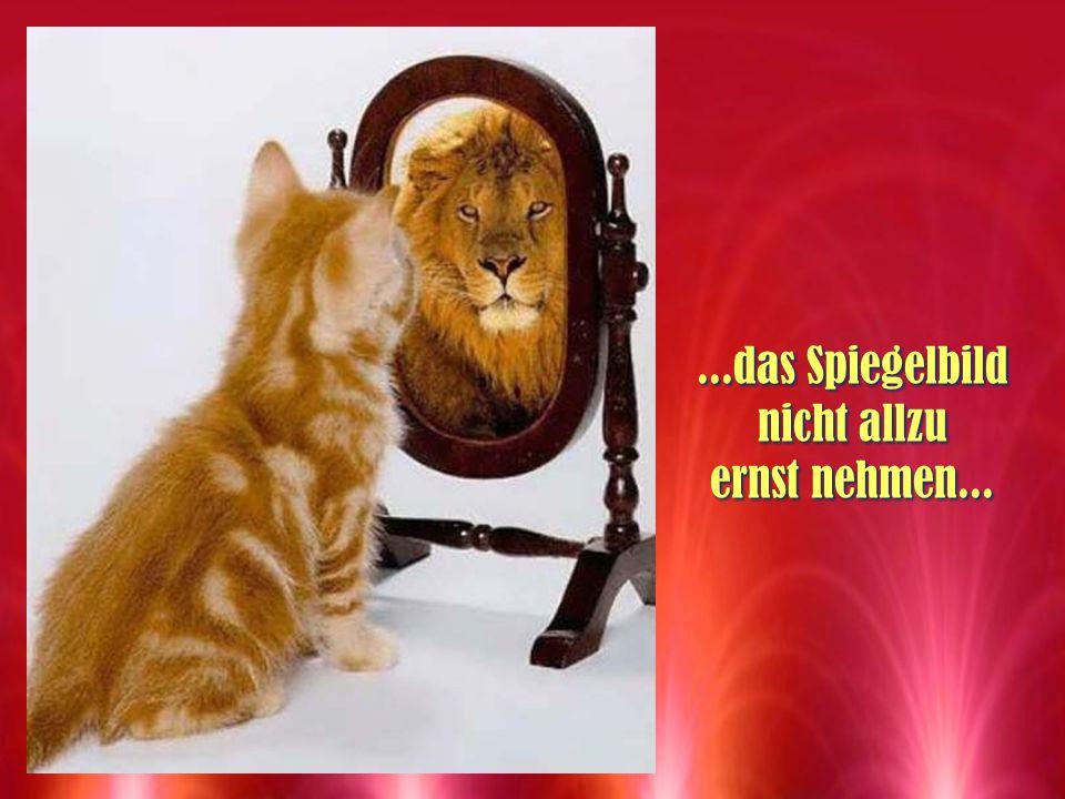 ...das Spiegelbild nicht allzu ernst nehmen...