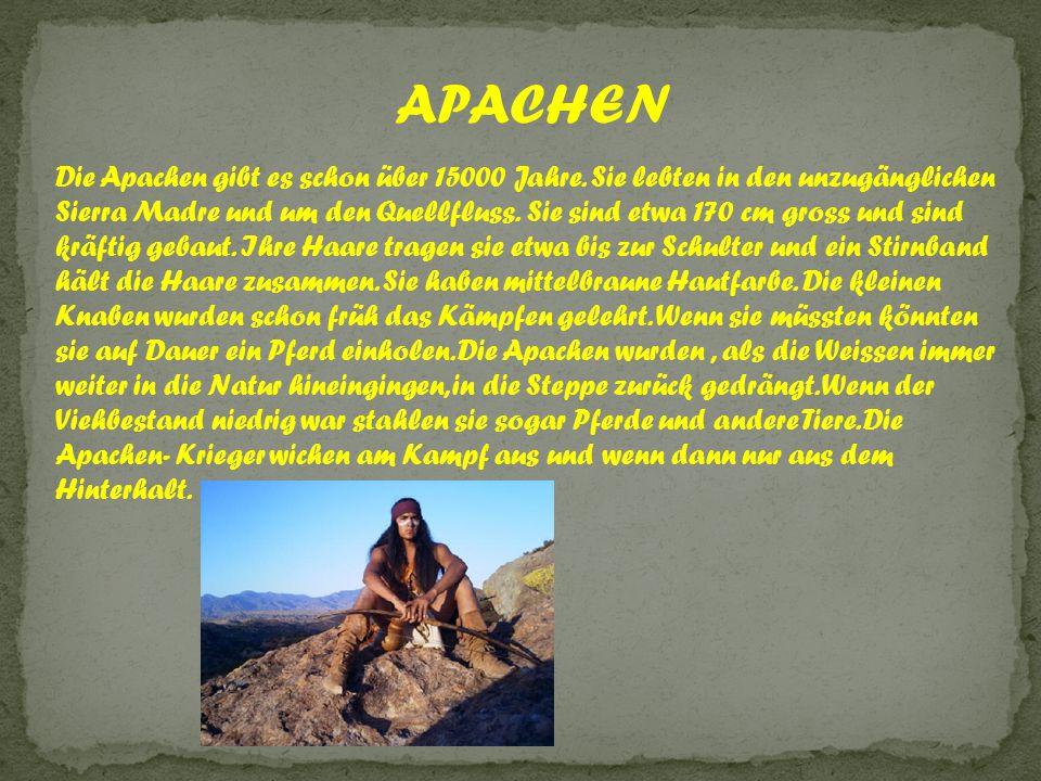 APACHEN Die Apachen gibt es schon über 15000 Jahre. Sie lebten in den unzugänglichen Sierra Madre und um den Quellfluss. Sie sind etwa 170 cm gross un