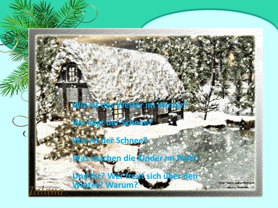 Дополни предложения Alle Kinder...sich über den Winter.