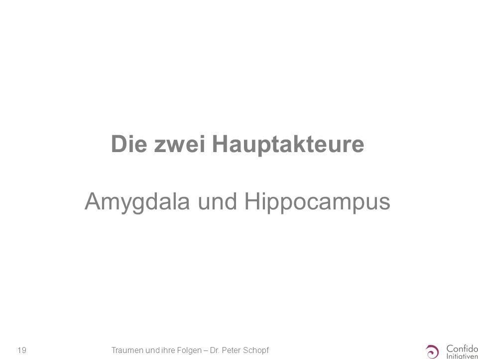 Traumen und ihre Folgen – Dr. Peter Schopf 19 Die zwei Hauptakteure Amygdala und Hippocampus