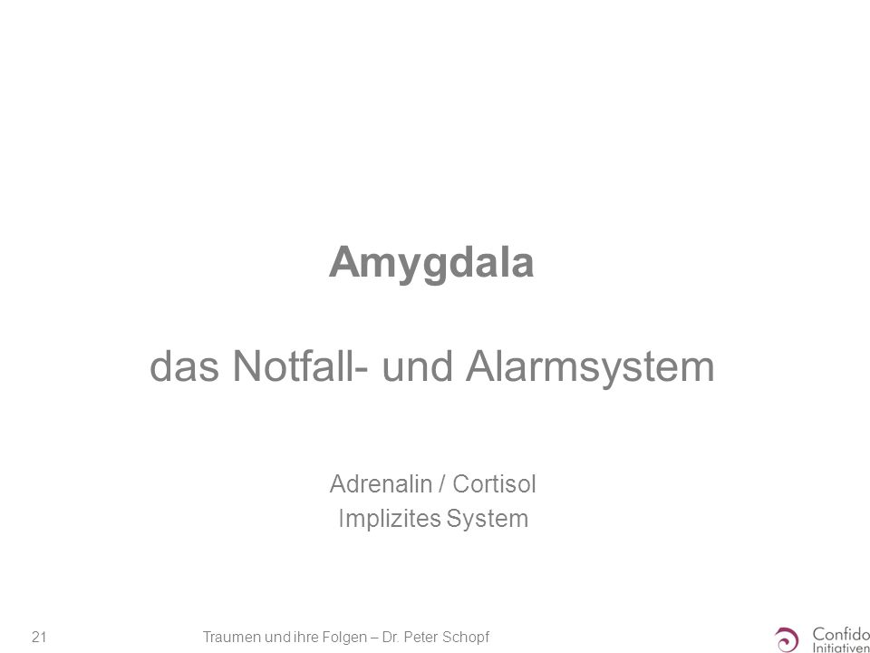 Traumen und ihre Folgen – Dr. Peter Schopf 21 Amygdala das Notfall- und Alarmsystem Adrenalin / Cortisol Implizites System