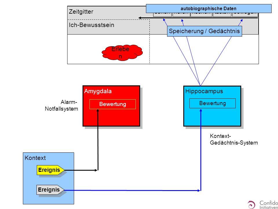 Zeitgitter Ich-Bewusstsein Hippocampus Kontext Ereignis Amygdala Alarm- Notfallsystem Ereignis Bewertung sehenhörenriechentastenbewegen Speicherung /