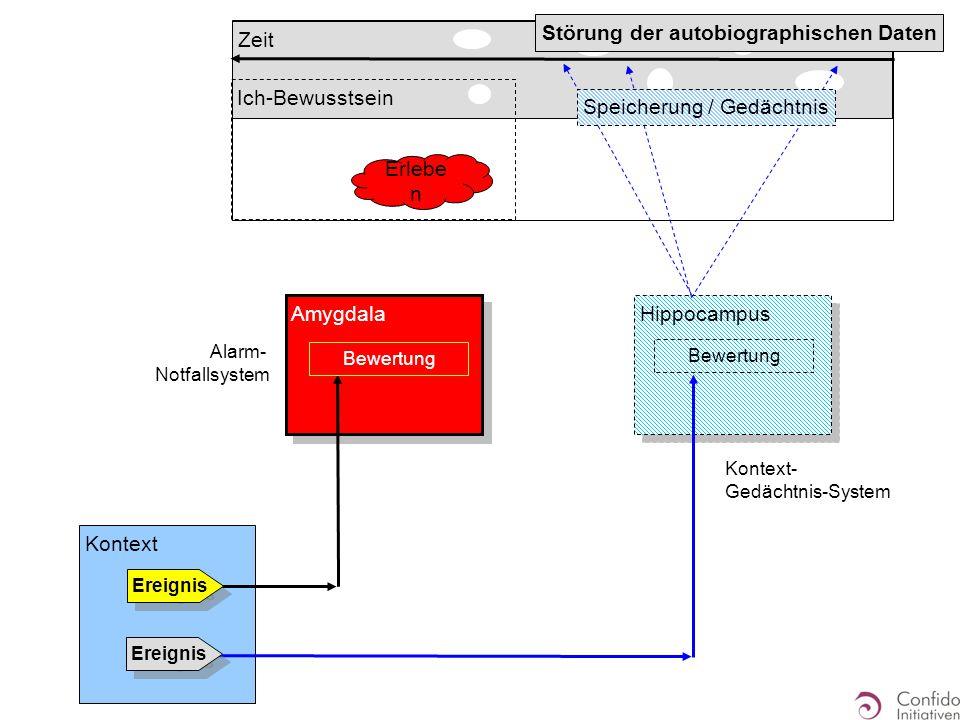 Hippocampus Zeit Ich-Bewusstsein Kontext Ereignis Amygdala Alarm- Notfallsystem Ereignis Bewertung Kontext- Gedächtnis-System Erlebe n Störung der autobiographischen Daten Speicherung / Gedächtnis