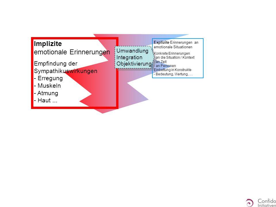 Explizite Erinnerungen an emotionale Situationen Konkrete Erinnerungen - an die Situation / Kontext - an Zeit - an Personen Einbettung in Konstrukte -