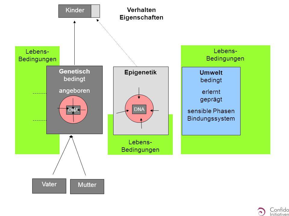 Lebens- Bedingungen Verhalten Eigenschaften Umwelt bedingt erlernt geprägt sensible Phasen Bindungssystem Epigenetik DNA Genetisch bedingt angeboren DNA Vater Mutter Kinder