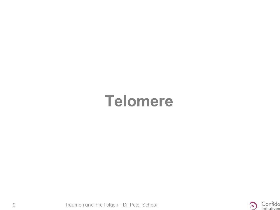 Traumen und ihre Folgen – Dr. Peter Schopf 9 Telomere