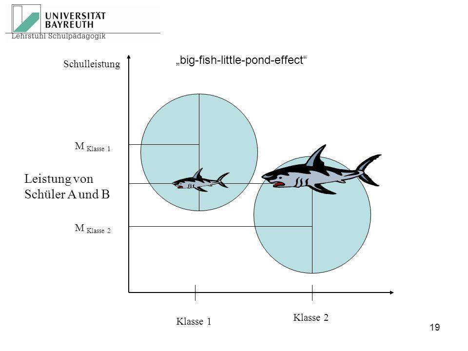 """Schulleistung M Klasse 2 M Klasse 1 Klasse 1 Klasse 2 Leistung von Schüler A und B """"big-fish-little-pond-effect"""" 19"""